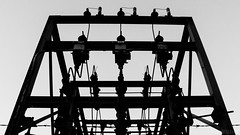 Fontana Dam 15 of 17 (Mr. Low Notes) Tags: 70d tva fontana dam fontanadam outdoors dusk dark night nightshot nightphotography power electricity electric nc blackandwhite bw monochrome silhouette