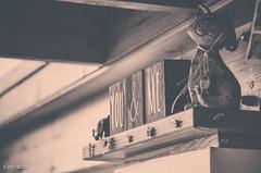 You & Me & Cat! (BGDL) Tags: lightroomcc afsnikkor55200mm1456g bgdl monochrome nikond7000 kitchen bitsandpieces 7daysofshooting week16 shelfshelves focusfriday lo
