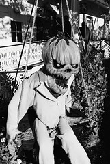 R1-054-25A (David Swift Photography) Tags: davidswiftphotography newjersey capemaycounty capemay halloween halloweendecoration pumpkins monsters scary spooky swings 35mm film nikonfm2 ilfordxp2
