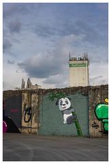 Dortmunder Panda
