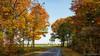 "Autumn road  ""Molenzichtweg Bergen op Zoom"" (BraCom (Bram)) Tags: bracom autumn boerderij road sky sunny zonnig trees weg countryroad fall farm herfst holland landscape landschap landweg bergenopzoom noordbrabant northbrabant nederland netherlands widescreen 169 bramvanbroekhoven nl"