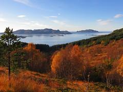 Golden afternoon (Mrs.Snowman) Tags: autumn afternoon glow ulsteinvik westernnorway