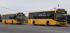20171101_9418_7D2-59 Double Yellow (305/365) (johnstewartnz) Tags: canon canonapsc apsc eos 2470 2470mm 7d2 7dmarkii 7d canon7dmarkii canoneos7dmkii newbrighton christchurch bus buses yellowline metronetwork 1078 1072 man manbus onephotoaday oneaday onephotoaday2017 project365 365project unlimitedphotos 100canon yabbadabbadoo yabbadabadoo 305365 day305