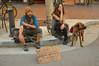 Grateful for Anything (radargeek) Tags: servicedog dog monterey ca california downtown farmersmarket march 2017