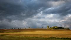 Cloud gap (doc_black44) Tags: wolken clouds landscape storm sunshine cloudgap colors landwirtschaft goldenoctober goldeneroktober leicasl varioelmaritsl12842490asph vorharz trees bäume leica landscapephotographer