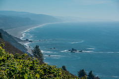 2017 Pac NW Redwood NP-465 (Michael L Coyer) Tags: parks nationalparks usnationalparks unitedstatesnationalparks redwoodnationalpark redwoodnatlpark redwood trees talltree coastaltrail teywolew coataltrailteywolewsection coastaltrailteywolew coast pacific ocean waves shore pacificocean seaside beach