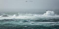 Stormy Longships (T_J_P) Tags: storm stormy cornwall landsend longships lighthouse sea coast