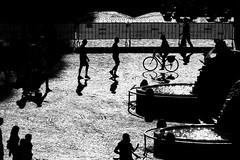 piazza del popolo allagata di luce (duegnazio) Tags: duegnazio canon 40d roma piazzadelpopolo lazio italia bn biancoenero bw blackandwhite monocromo controluce ombre bicicletta fontana persone italy rome