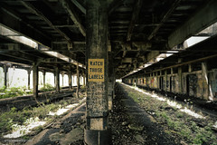 Don't Label Me (gregador) Tags: buffalo centralterminal decayed abandoned freightplatforms railwayexpressagency urbex urbanexploration urbanexploring sign politics