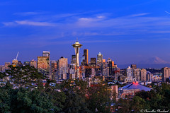"""Tossed salad and Scrambled eggs"" (Endless Reflection Photography) Tags: seattlewashington seattle downtownseattle kerrypark spaceneedle tossedsaladandscrambledeggs seattlephotographer emeraldcity seattleautumn seattleseahawks keyarena mtrainier pugetsound pacificnorthwest streetmeetwa frasier endlessreflectionphotography ereflectionphotos cmerchant1 bellevue bellevuephotographer columbiatower seattleskyline"