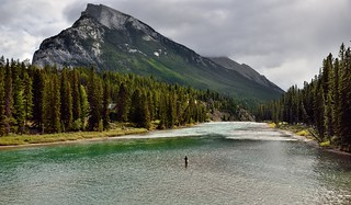 Fishing in the Bow River (Banff National Park)