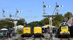 55009/55019/55002 (elr37418) Tags: 55009 55019 55002 bluebell railway horstead keynes uk england sussex deltics station heritage blue green nikon d7000 napier track signals semophore