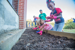 Week in Photos - 62 (Ole Miss - University of Mississippi) Tags: 2017 skb3162 willieprice daycare garden kids children seeds plant planting sowing farm mississippifarmtoschoolnetwork