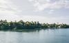 DSC_0282-edit (nesteaman2) Tags: india cochin kerala alleppey backwater houseboat boat river water jungle trees