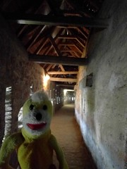 Romania - Swami inside the walls of a Prejmer, a medieval fortified church (ashabot) Tags: unesco romania travel traveldiaries 2017 dark lightandshadow darkly