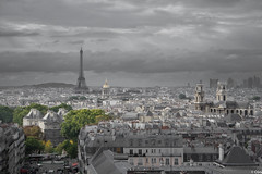 (C G G) Tags: paris city grey green atmosphere pollution sad