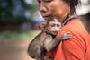 Ratanakiri, Cambodia (Aicbon) Tags: verde ratanakiri ratanakkirí cambodia cambodja camboya kampuchea khmer asia southeastasian sudestasiàtic sudesteasiatico woman monkey baby indochina asiatic perosna people portrait bokeh canon 80d 50mm cambodge cambogia camboja jiǎnpǔzhài 柬埔寨 kamboçya kambodia 캄보디아 kamboḍiyā कम्बोडिया kambodiya kambodja kambodscha kambodsja kambodža камбоджа kambodża камбоџа kambodzsa kamboja カンボジア καμπότζη kemboja կամբոդիա banlung រតនគិរី macacafascicularis macaque longtailedmacaque