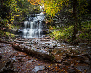 Ricketts Glen - Ganoga Falls