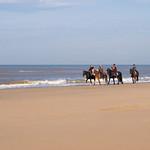 Wassenaar Beach thumbnail