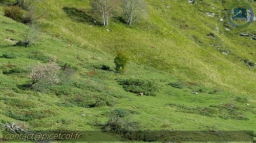 Pic Burcq et Marmida 20170910_040