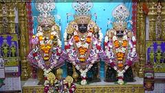 NarNarayan Dev Shringar Darshan on Thu 05 Oct 2017 (bhujmandir) Tags: narnarayan dev nar narayan hari krushna krishna lord maharaj swaminarayan bhagvan bhagwan bhuj mandir temple daily darshan swami shringar
