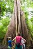 Costa-Rica-6182.jpg (ingmar_) Tags: costarica gezin landschap natuur vakantie zomervakantie