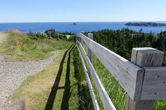 Beware of Cliff (gabi-h) Tags: crowhead longpoint fence fencefriday shadow newfoundlandandlabrador atlanticocean rock rocks cliff gabih grass landscape sky blue trees