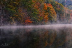 """Morning Burn"" (the_lowe_life) Tags: autumn statepark redrivergorge danielboonenationalforest millcreeklake kentucky explore nikkor d600 nikon sunrise trees fall color dawn moody fog lake"