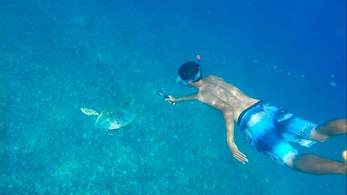 Snorkel adventure following the sea turtles 🐢  The Gilis (Trawangan, Meno and Air). Lombok. Indonesia  Sept 2017 #itravelanddance