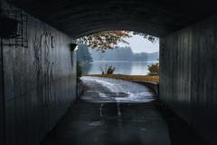 Ottawa Miwate (superdavebrem77) Tags: ottawa miwate chaudierefalls rideaucanal thanksgiving fall rainy wet