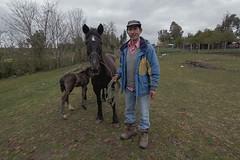 CAMPO (oscar pinto fotografía) Tags: campo bosque persona caballos verde concepcion quillon tranquilidad tranquility country huenucheo soledad