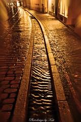 Freiburg / Bächle (NoireRose) Tags: freiburgimbreisgau bw nikon d90 herbst autumn nachtaufnahmen nightshot bächle altstadt oldtown photodesignbykati