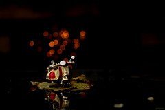 City lights... (eleni m) Tags: toy tiny scooter leaf autumn lights outdoor dof bokeh weekend off reflection rain puddle night dark