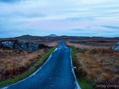 Bogroad in the evening (Nelleke C) Tags: 2016 bogroad connemara countygalway holiday ierland ireland landscape landschap peatbog road vakantie veen weg