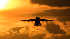 EI-RJF (tynophotography) Tags: ams eham schiphol amsterdam airport cityjet bae 146 avro eirjf