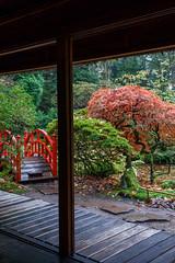 IMG_3127 (TvdMost) Tags: huysclingendael japansetuin landgoedclingendael