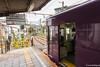 Tunel-Sakura-Kioto-Randen-5 (luisete) Tags: randen hanami japan túneldesakura tranvía tramway japón kioto kyoto