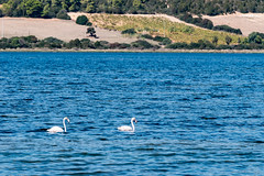 Sardinien Tag 8 (24)