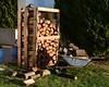 Winter is coming.. (fil_____) Tags: φθινοπωρο θεσσαλονικη ξυλο χειμωνασ ελλαδα μακεδονια νεοιεπιβατεσ περαια κηποσ αυλη φυση νικον wood autumn winter yard thessaloniki greece neoiepivates peraia nikond3300 nikon nikonian outdoor