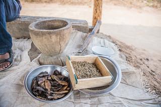 Dried fish and the pounded nutrient-dense fish powder, Zambia. Photo by Chosa Mweemba.