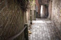 The Steps Down (jillyspoon) Tags: explore 'stleonard'ssteps' bridgnorth steps brick brickwork tiles narrow alley snicket ginnel