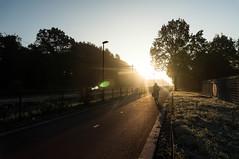 This morning on the F35 - Explored (blokkadeleider) Tags: hengelo hengel twente oaweriessel overijssel nederland niederlande netherlands berfloes berflo es f35 fietssnelweg radschnellweg bicyclehighway sunrise zonsopkomst sonnenaufgang zon sun sonne