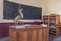 Movie set (nathalieve84) Tags: movieset movie lost abandoned bureau classroom class livingroom urbex
