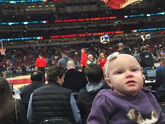 "Dani at Her First Bulls Game • <a style=""font-size:0.8em;"" href=""http://www.flickr.com/photos/109120354@N07/24348616958/"" target=""_blank"">View on Flickr</a>"