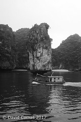 Halong Bay (CATDvd) Tags: catdvd davidcomas httpwwwdavidcomasnet httpwwwflickrcomphotoscatdvd august2017 cộnghòaxãhộichủnghĩaviệtnam repúblicasocialistadevietnam repúblicasocialistadelvietnam socialistrepublicofvietnam việtnam vietnam nikond70s landscape paisaje paisatge coast costa illa isla island mar sea jungle rainforest selva badiadehạlong badiadehalong bahíadehalong hạlongbay halongbay vịnhhạlong barca boat