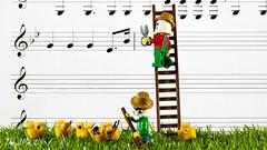 Harvest-sing