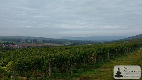 Welzbachtal, Blick auf Rheintal