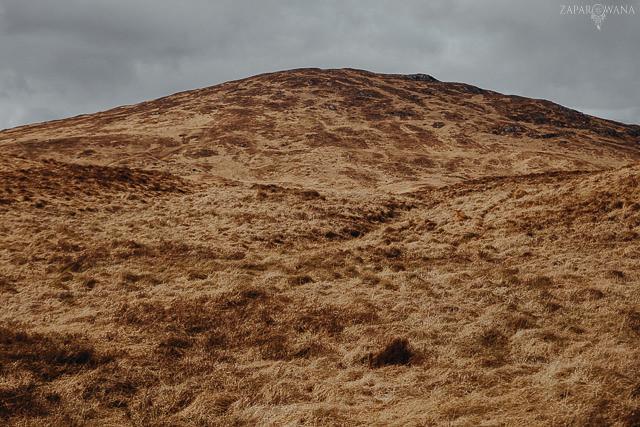 077 - Szkocja - Loch Lomond i okolice - ZAPAROWANA_