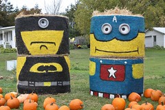 Hay Bale Characters in York, PEI (Craigford) Tags: york pei canada hay bales characters pumpkins fall autumn