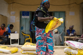 Cameroon: Food for Boko Haram's displaced